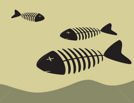 peces flotando
